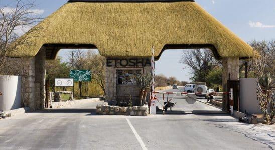 parcs en namibie